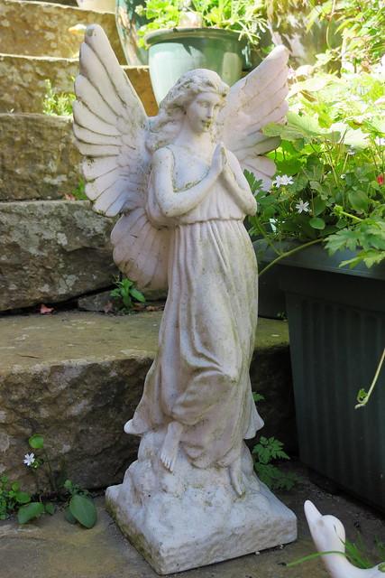 Garden Angel IMG_0183