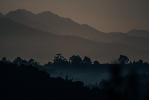 Late Nights 5 | by Ryan Jarrett 4130