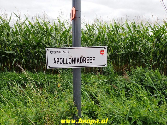 2018-08-23 Poperinge 35 Km  (70)
