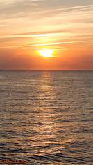 IMG_3165-Panorama.jpg