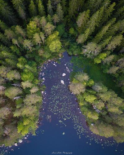 suomi finland jyväskylä vaajakoski nature drone dji mavic pro fc220 trees forest water bay lake autumn fall aerial photography amazing view europe