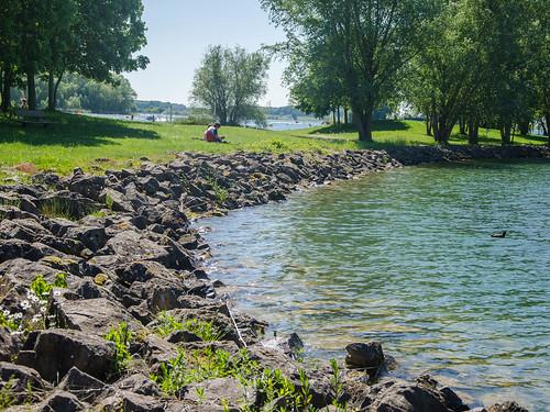 aube champagne grandest nikon d7000 lac damance dienville arbres trees parc parks pelouse pierres rocks europe europa eu ue