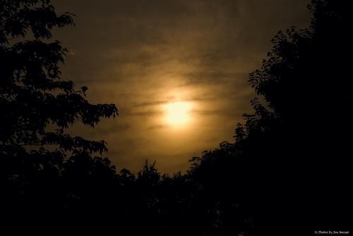 lancastercounty lancaster lancasterpa silhouette silhouettes trees sun clouds eveninglight eveningskies evening intheevening pennsylvania pa