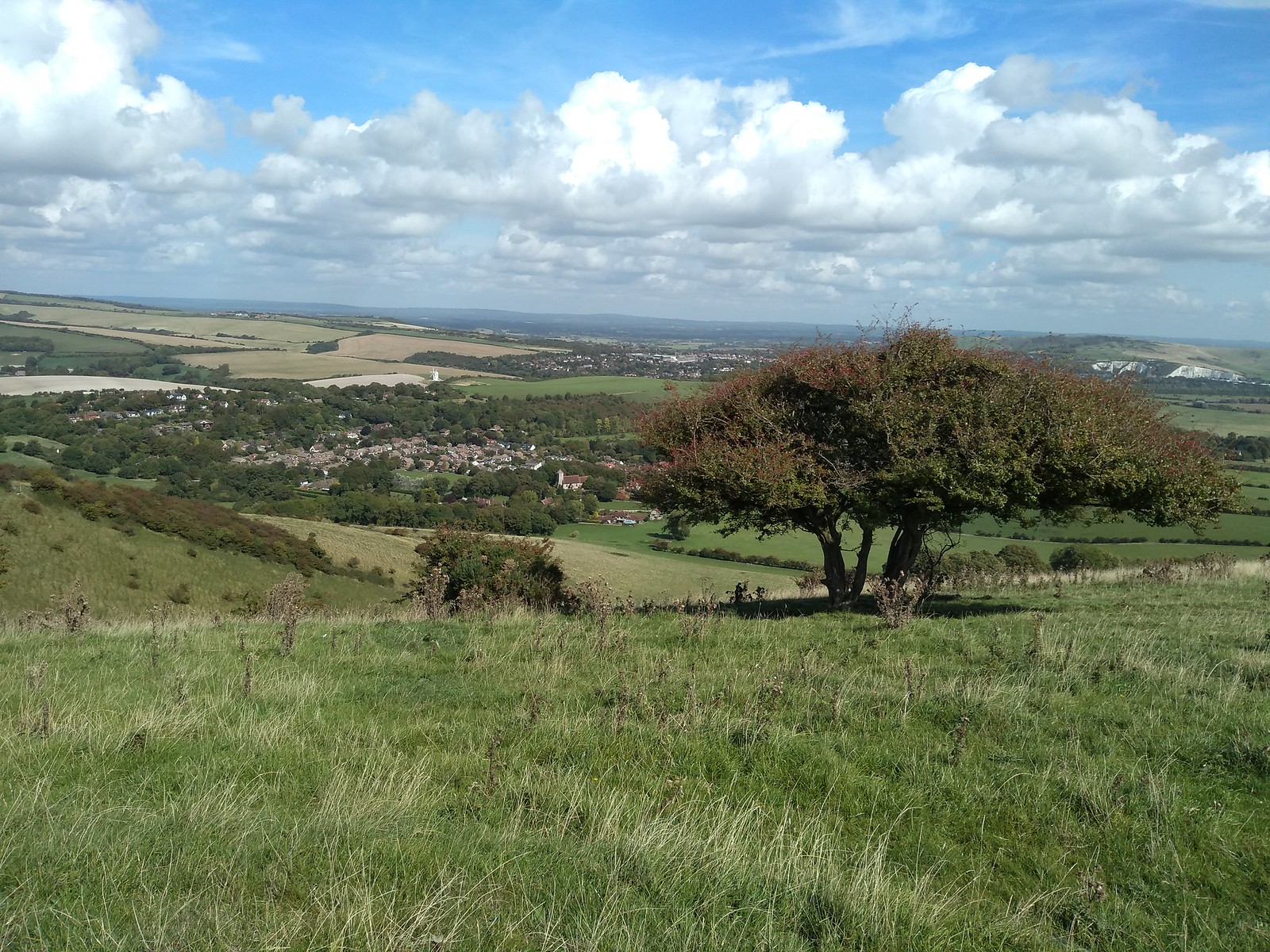Kingston from the Downs