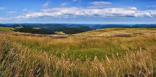 vosges routedescrêtes france summer panorama pse2018 stitched walkers hiking balade popular tourism