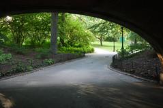 Under the Glade Arch