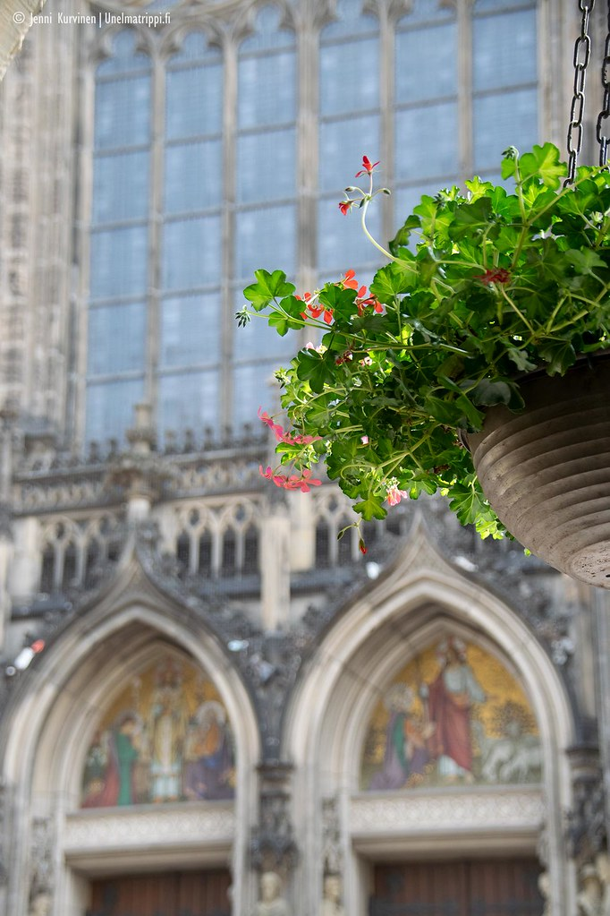 Kukka-amppeli katedraalin edustalla Münsterissä