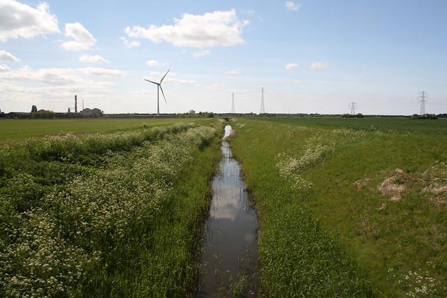 Fields near North Lynn
