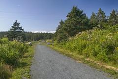 Atlantic View Trail