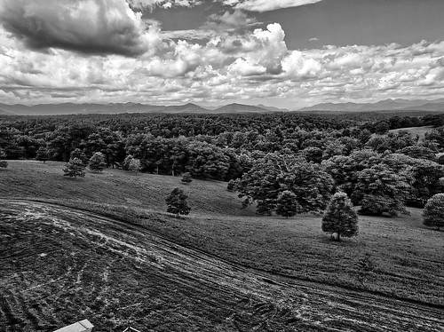 biltmore hdr landscape bw blackanwhite