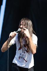 Piebald en Riot Fest Chicago 2018
