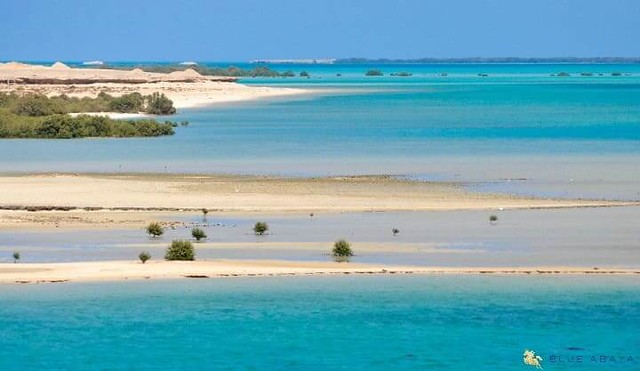 4630 13 Best Places to Visit in 13 different Regions of Saudi Arabia 02
