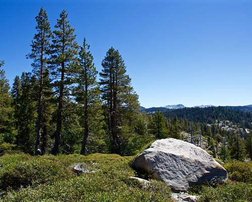 californiastatehighway88 mountains trees roadtrip california sierranevada highsierra