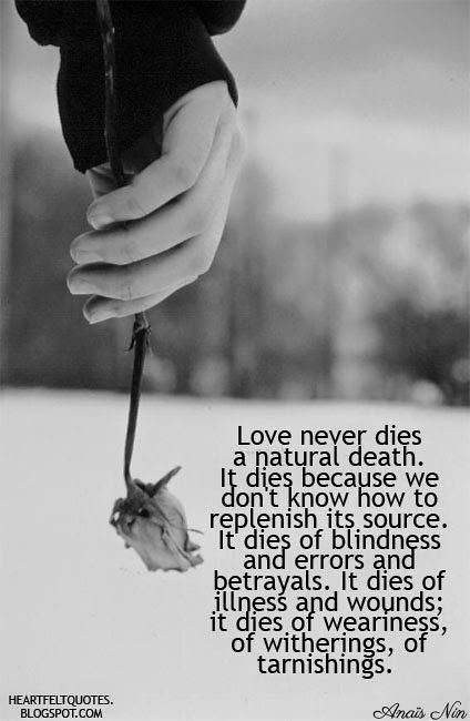Love Quotes Love Never Dies A Natural Death Love Quotes Flickr
