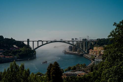 Douro Fog | by Adam Bonn