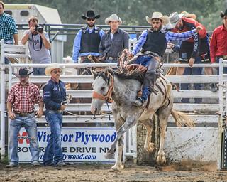 2018 CPRA Cochrane Aug11 - Saddle BroncB 319 | by calgarypolicerodeophotos