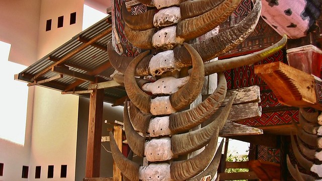 INDONESIEN; SULAWESI, Tanah Toraja , in Lemo, Giebelschmuck an einem   tongkonan , die Büffehörner der Opferstiere und dieSchnitzereien symbolisieren  den Wohlstand der Familie,  17628/10637