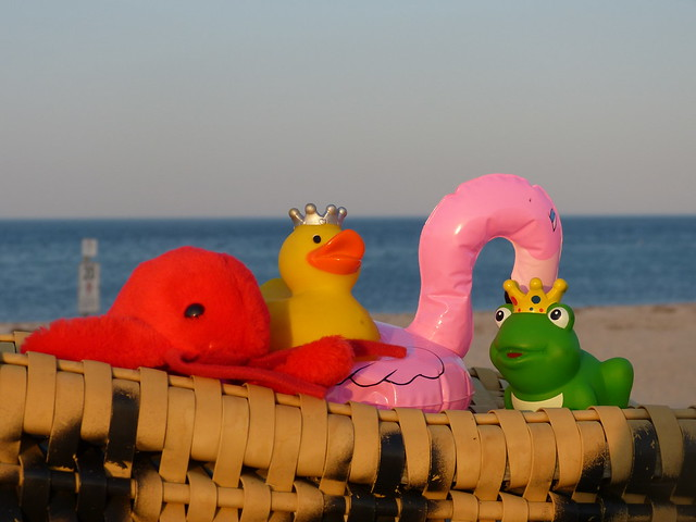 Prinzessin und König sind mit ihren Freunden Hummer und Flamingo an der Ostsee