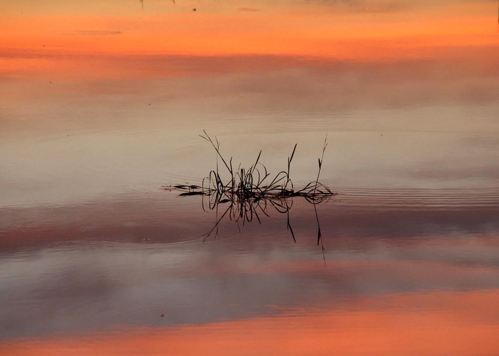 Amazing colorful sunset
