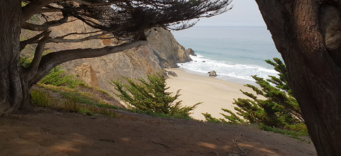 graywhalecovestatebeach californiastatepark cabrillohigtway higtway1 pacificcoast california unitedstates canon