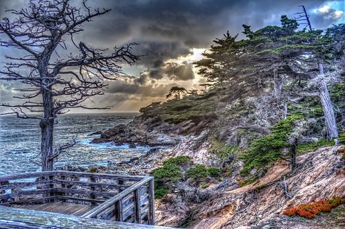 pebblebeach northerncalifornia california rocks rockyshore sunset clouds moody tree
