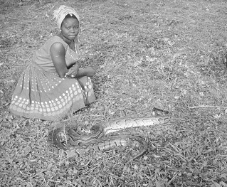 Interpreter Kwali with python Ghana