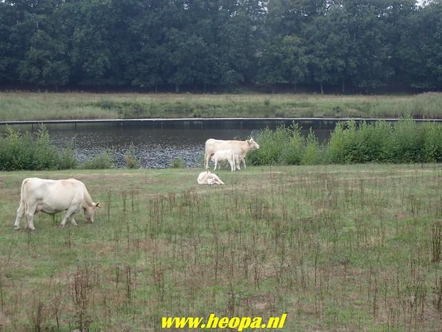 2018-08-29 Bussum 25 Km (116)