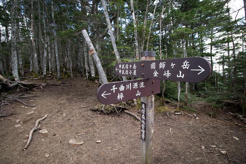 20170527_甲武信岳_0459.jpg