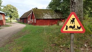 Suècia | by Tartanna