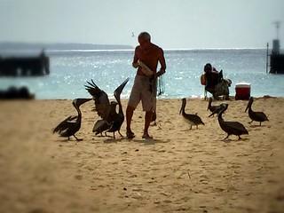 ~...en donde tú estabas, había vida, vuelo y danza de aves.~   by ForeverAileen