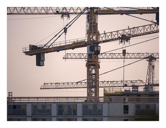 Cranes @ dusk (UF178 ) (Rebirth of a HFSA45200 )