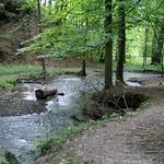 Der Oefter Bach im Naturschutzgebiet Oefter Tal