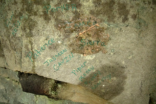 Green paint pen, cleanup and graffiti removal Black Mountain, Cumberland Trail SP, Cumberland County, Tennessee 1 | by Chuck Sutherland