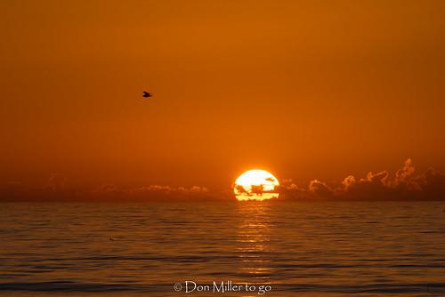 water sun atlanticocean sunrise sol ocean