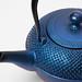 Oitomi Cast Iron Teapot Saphir
