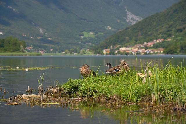 Lago die Endine