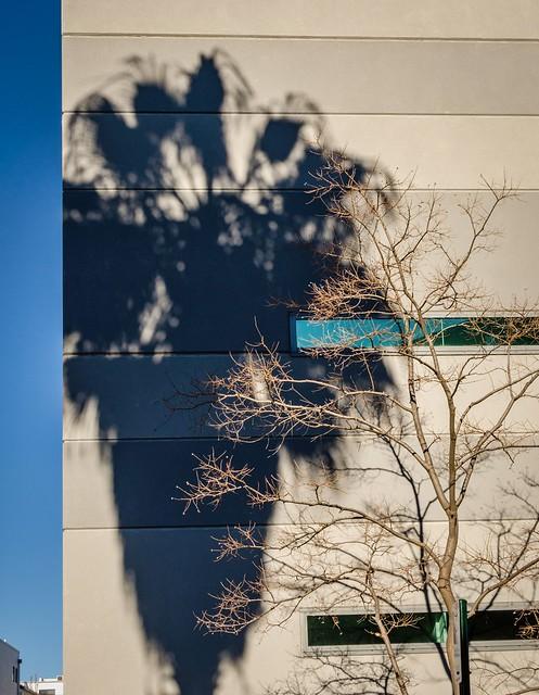 Fake Shadows