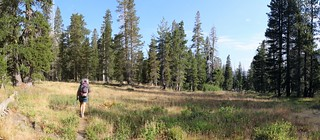 0730 The Rubicon Trail crosses a small meadow just east of Lake Lois   by _JFR_