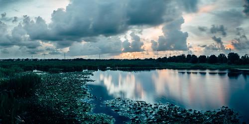 sarasota celeryfields celeryfieldssarasota sonya7s vsco bokehpanorama panorama nikkor85mm cinematic colorgrade nature landscape swamp water longexposure sunset srqphotographer