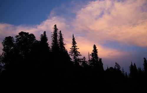 trees donegalbay silhouette sunset woods forest dusk clouds beaverisland sunsetbeach michigan unitedstates us partly cloudy