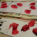 preparing poppies paper ecoprinting