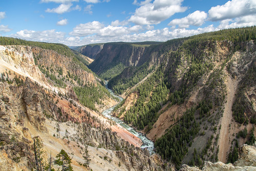 The view downriver from Inspiration Point | by YellowstoneNPS
