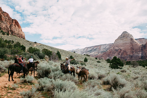 Canyon trail ride 2 | by Kurtis Chen