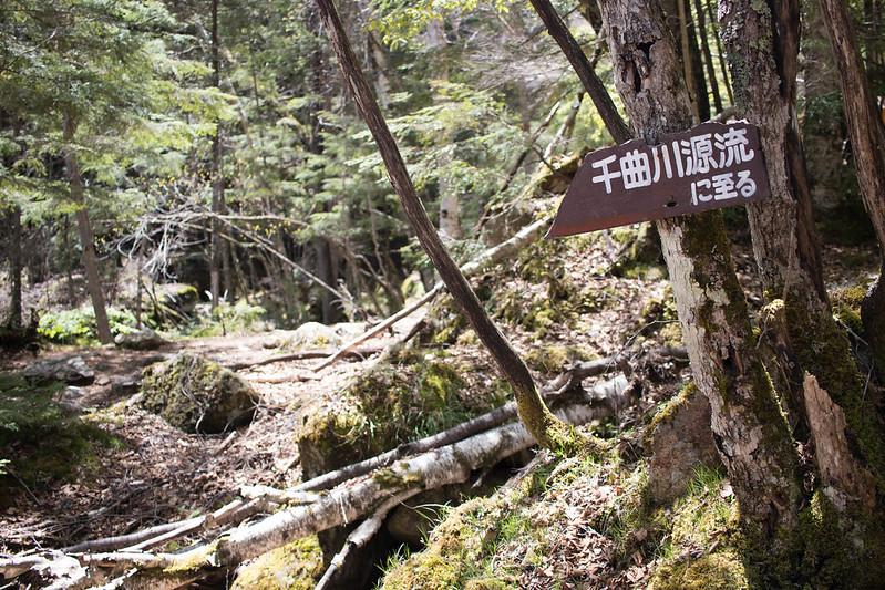 20170527_甲武信岳_0270.jpg