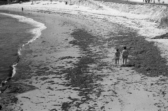 Playa de A Caosa, San Ciprián.