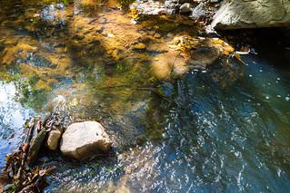 Hampton-Beecher Nature Preserve