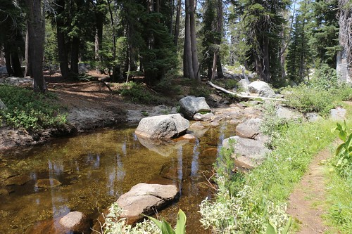 0560 In August 2018 the Rubicon River was very slow and peaceful where the Rubicon Trail crossed it | by _JFR_