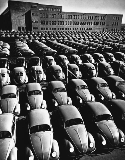 beetle army