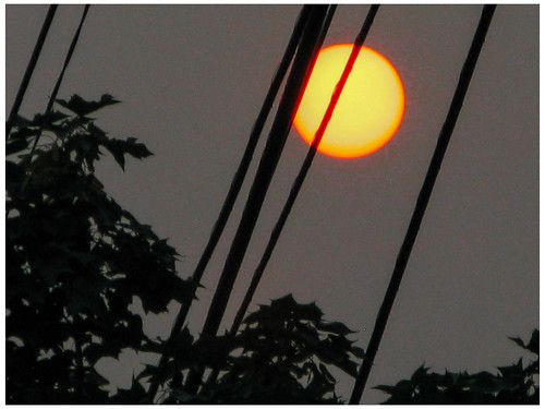 Orange Sun at Dusk