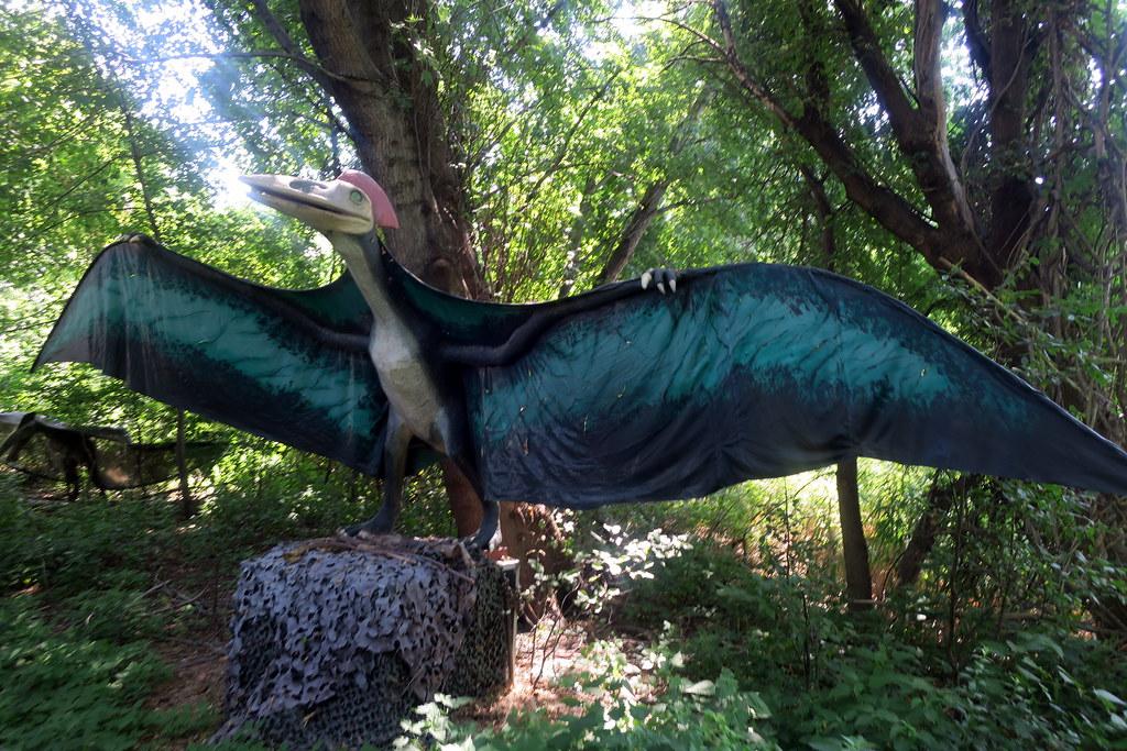 NJ - Leonia: Field Station: Dinosaur - Quetzalcoatlus | Flickr